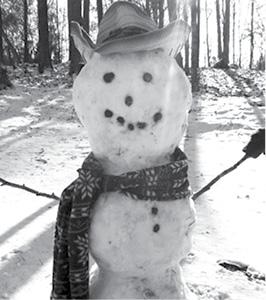 SnowmanG.psd