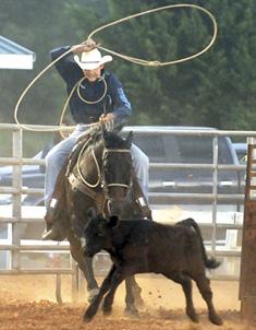 Rodeo.psd