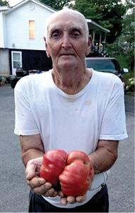 David Armstrong (tomato).psd