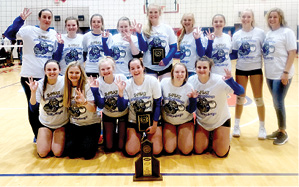 VolleyDawg Champs.psd